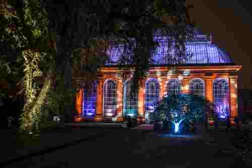 Botanic Lights botanic gardens light up botanic gardens at night